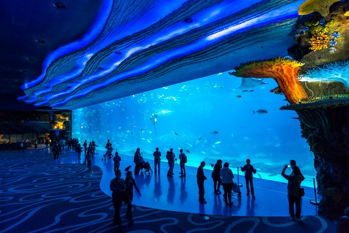 Chimelong-Ocean-Kingdom-Shark-Aquarium